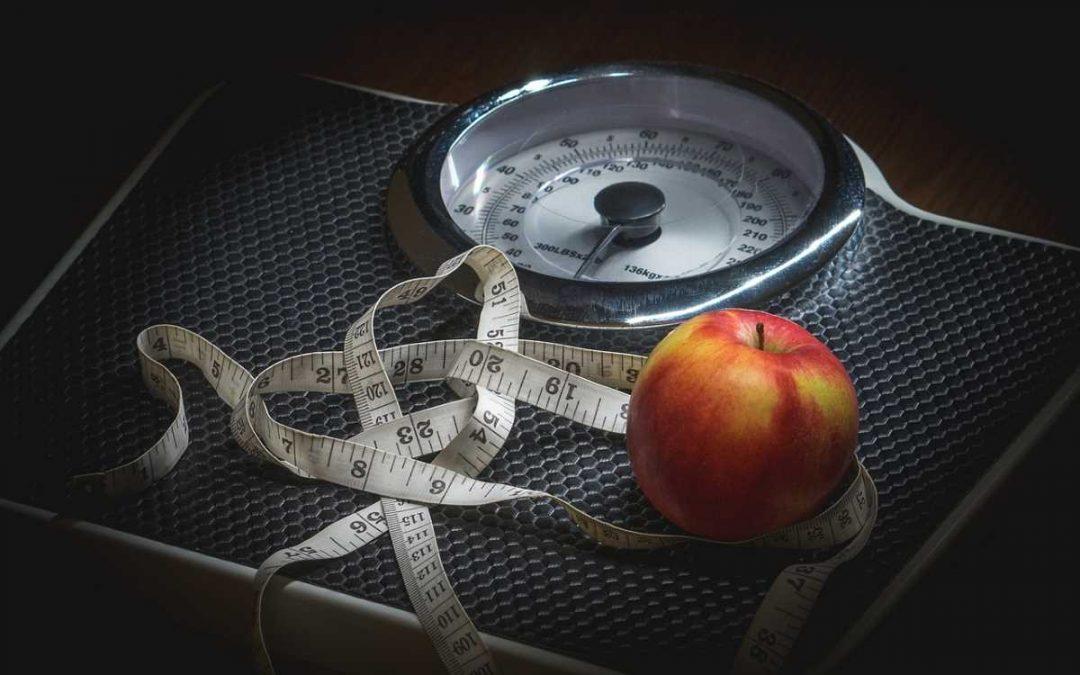 Durch dick und dünn